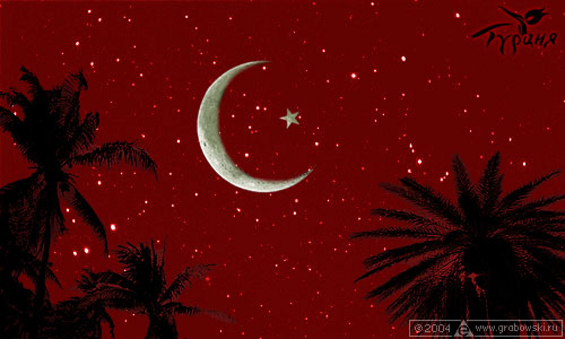 The Turkish flag created with a red sky, stars and the moon, and palm trees.