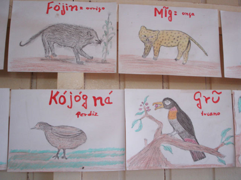 Four drawings of animals with their names in Kaingang and Portuguese.