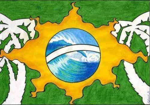 A drawing of the flag of Brazil slightly changed with white palm trees in the green area, the yellow rectangle has become a sun and the blue ball in the middle looks like a part of the sea.