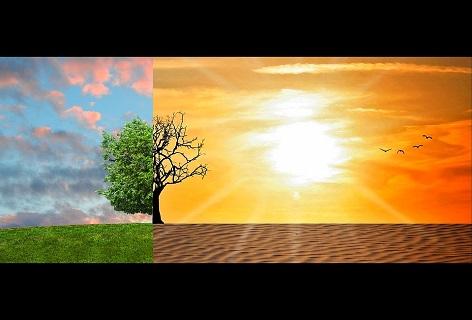 Unterrichtsmaterial Zum Klimawandel Von Der Grundschule Bis